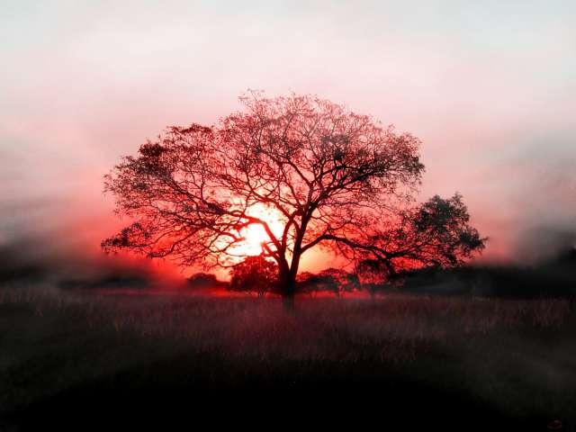 Amazing-Sunset